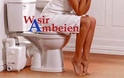 Wasir-Ambeien